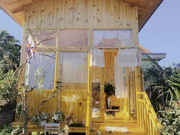 Nhà Gỗ 180 Triệu Style Đà Lạt Mộng Mơ Ở Ngay Đồng Nai